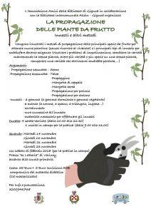 Propagazione delle piante da frutto adb di gignod - Calendario trattamenti piante da frutto ...